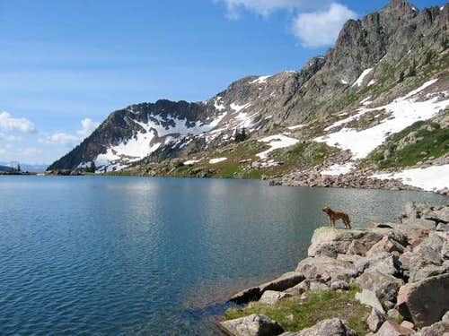 My dog at Pitkin Lake with...
