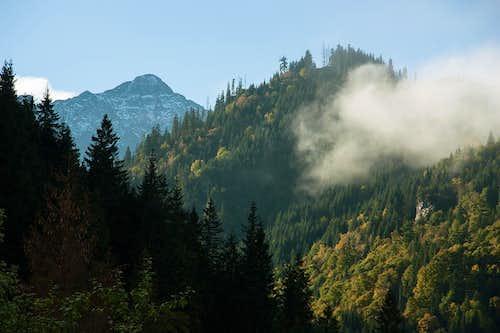 Tatranska Javorina morning