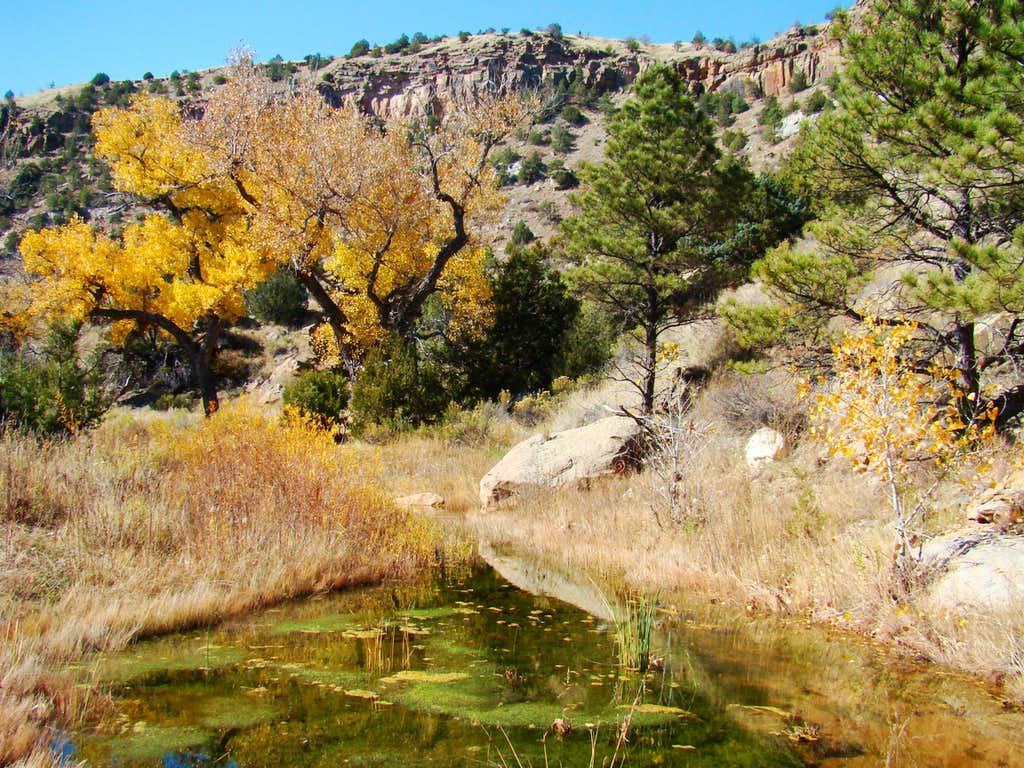 Fall in Red Canyon