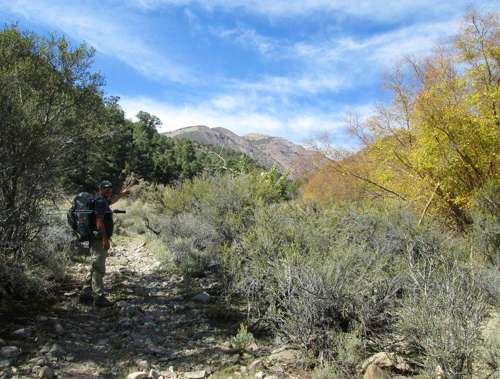 Trail in Jett Canyon