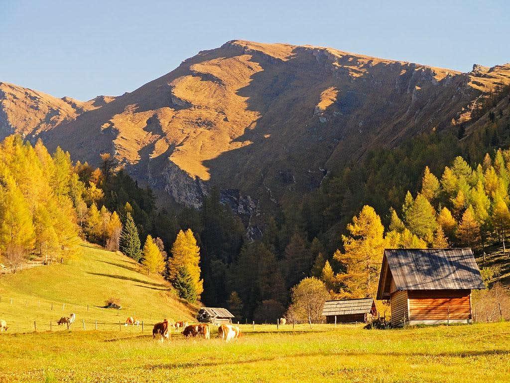 Poisnig above Faschaun meadow
