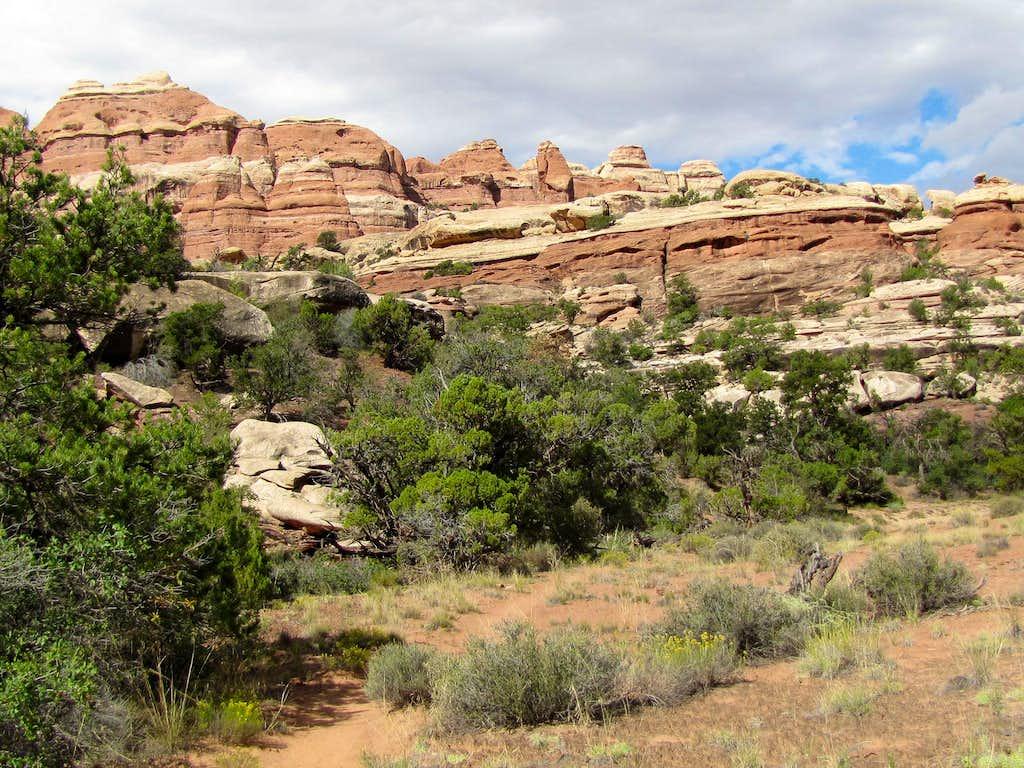 Elephant Canyon