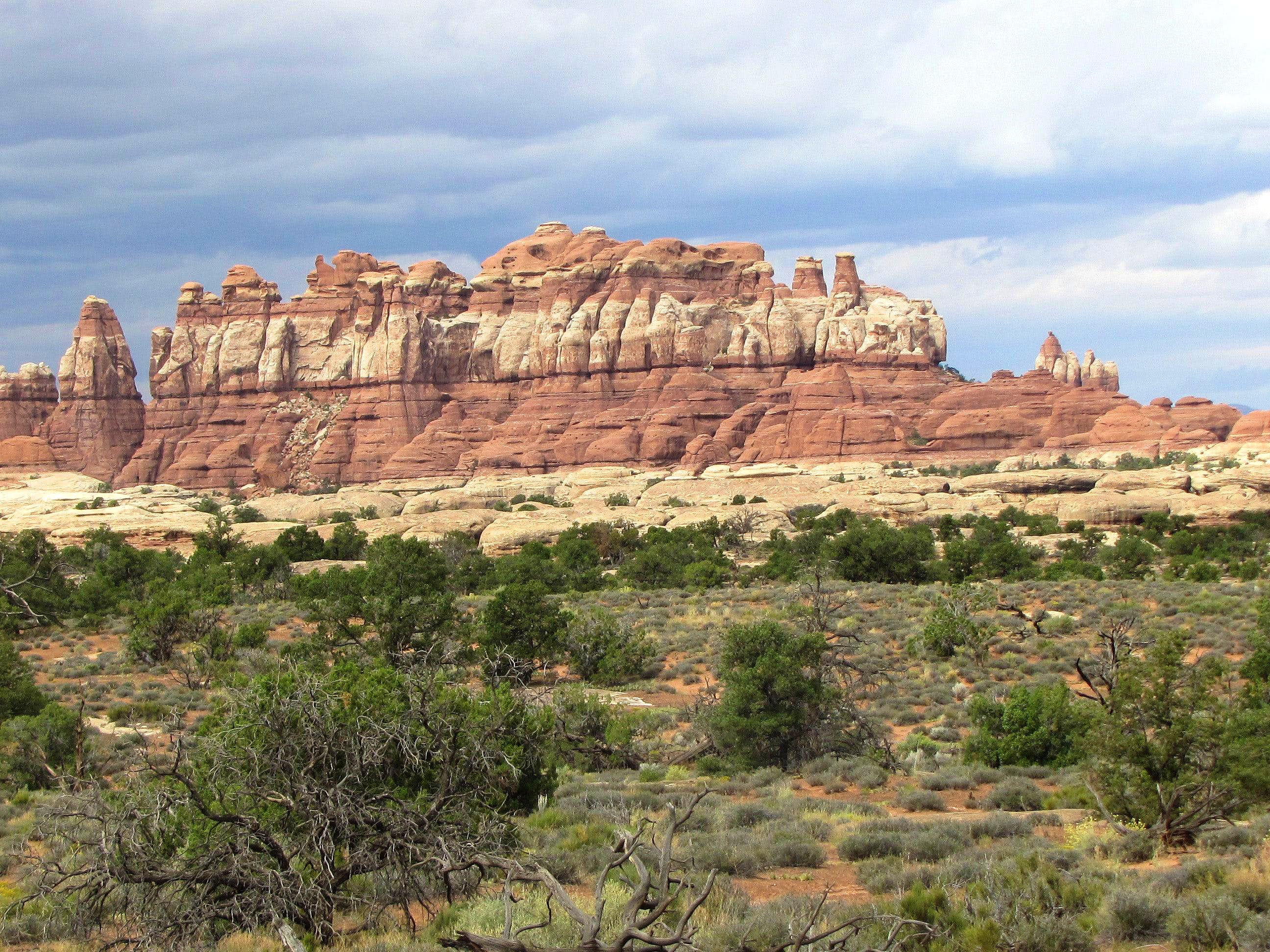 Big Spring/Squaw/Elephant Canyon Loop
