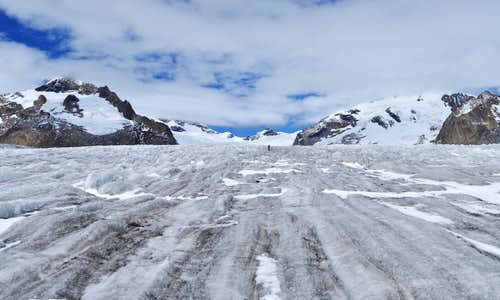 Small and lost on the Grand Aletsch Glacier