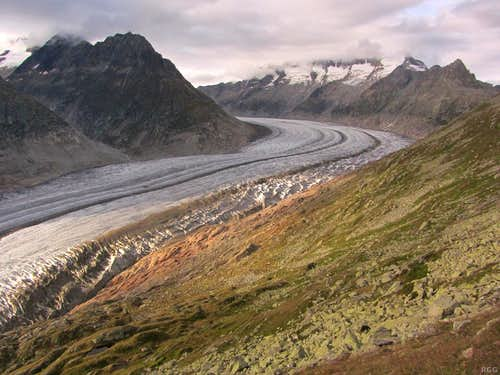 Afternoon light on the Grand Aletsch Glacier