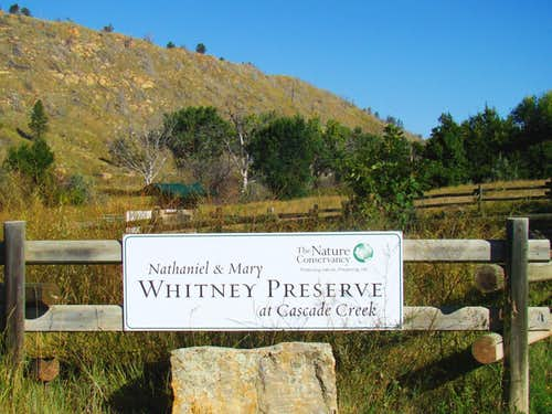The Whitney Preserve