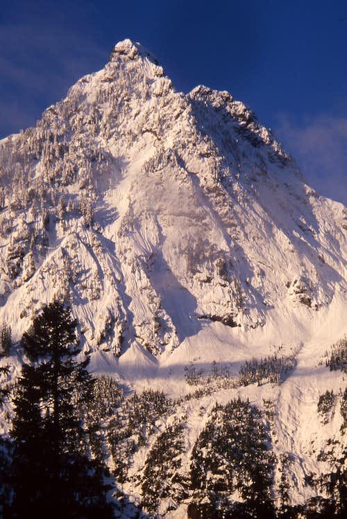 Hall Peak from NE