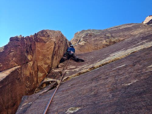 Ginger Cracks 5.9