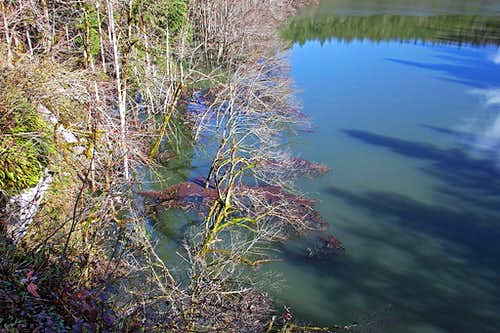 Rakov Skocjan in high waters