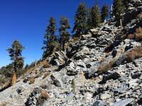 Looking back toward Summit Lake