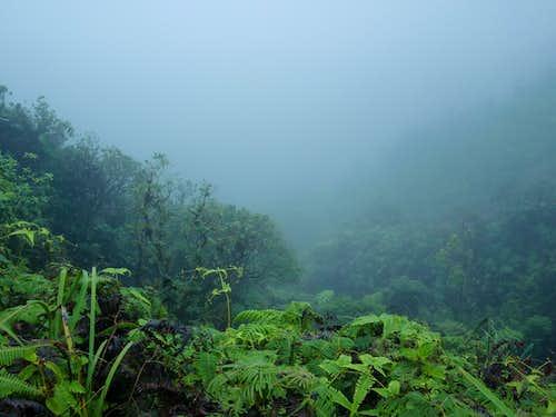 Top of Kahana Valley