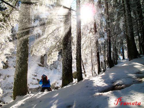 Rila winter scenery