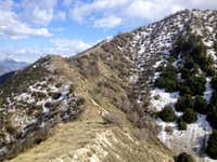 A view of the final pull up to the Stone Canyon Trail