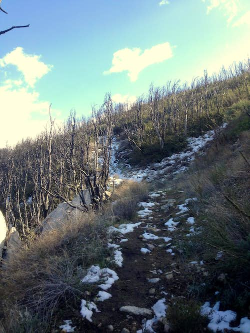 Rejoining the Stone Canyon Trail