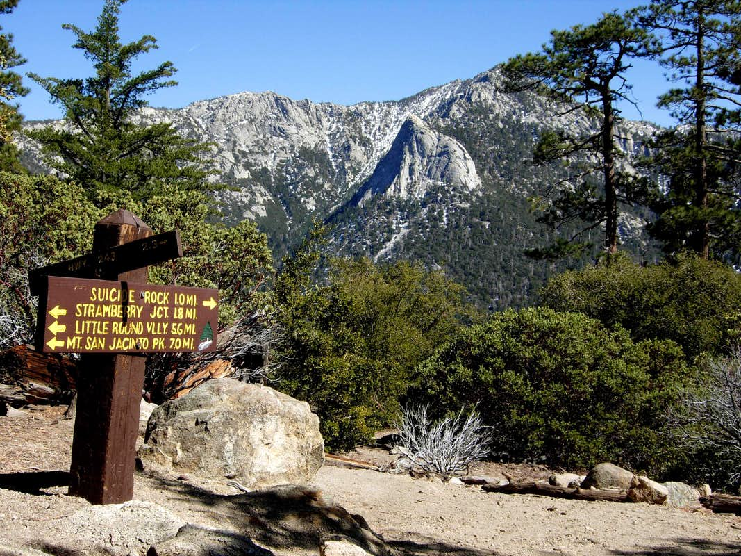 idyllwild trail map with 923744 on Mount San Jacinto State Park further San Jacinto Peak Via Fuller Ridge Trail besides 23048148 in addition Dogwood C ground Lake Arrowhead as well Ernie Maxwell Scenic Trail Idyllwild.
