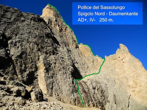 Pollice North Ridge - Daumenkante topo