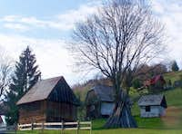Arieșeni - a typical settlement of the Moți