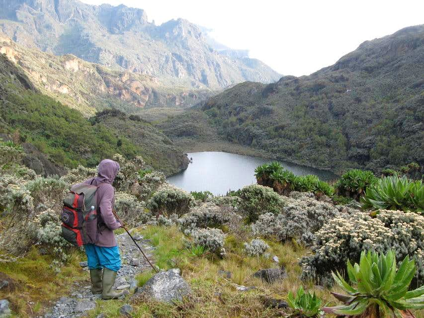 Rwenzori Central circuit, Margherita Peak