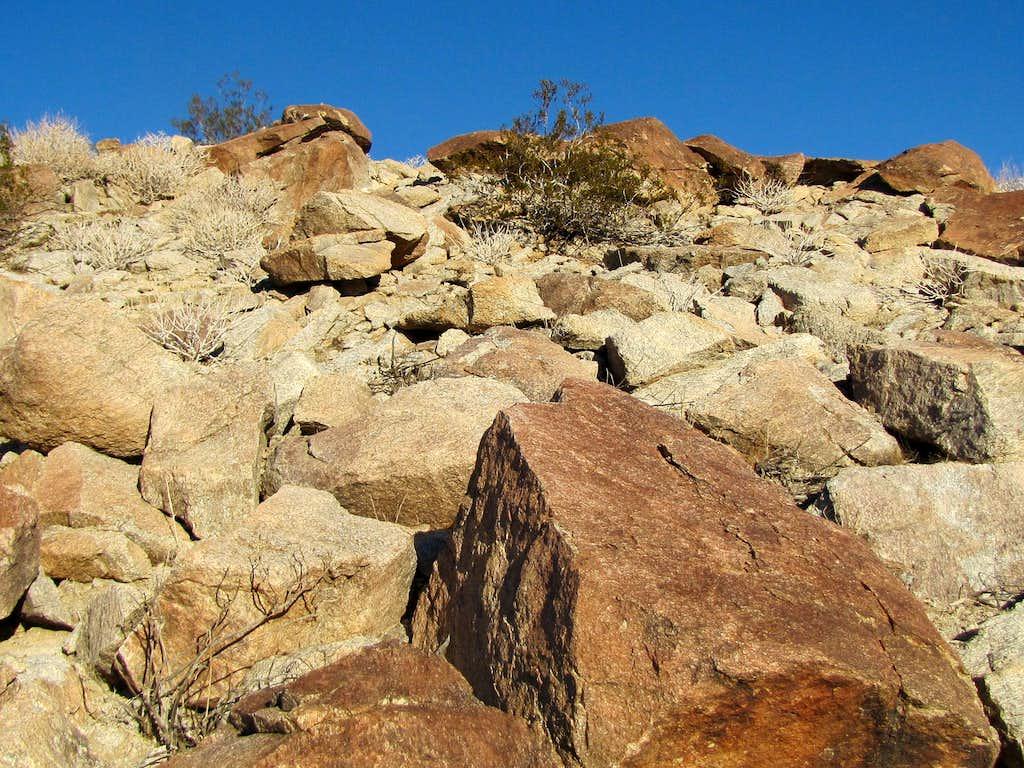 On the southeastern ridgeline of Coyote Mountain