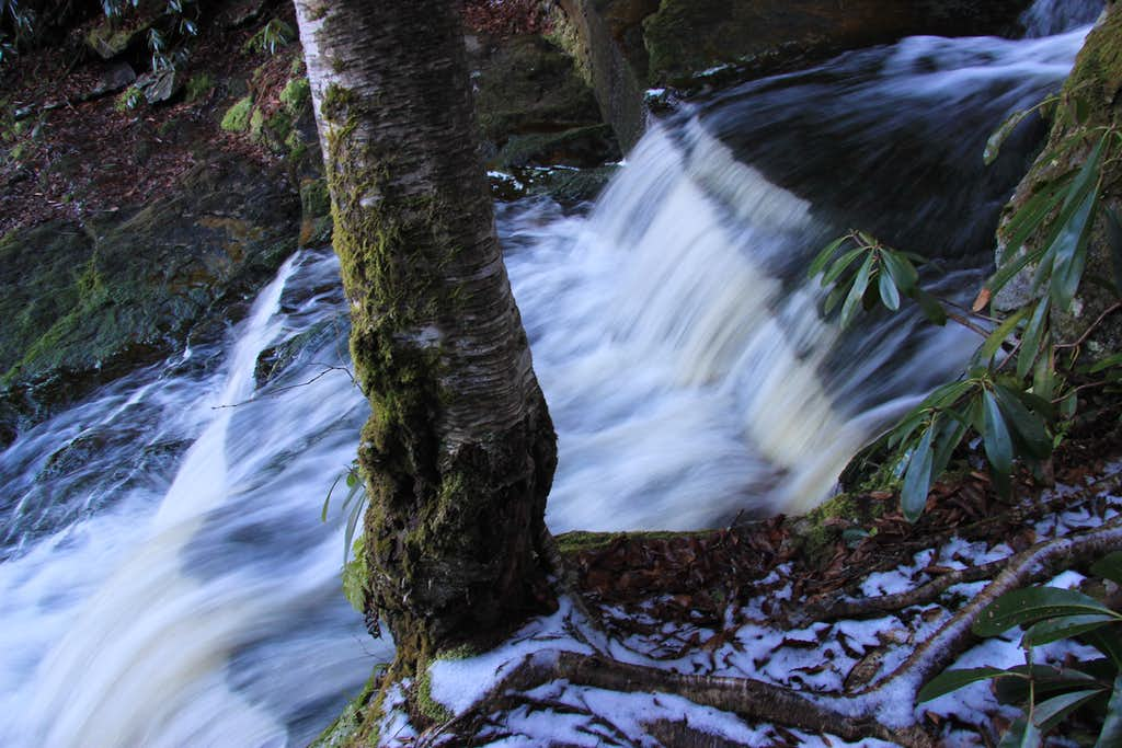 Elakala Creek