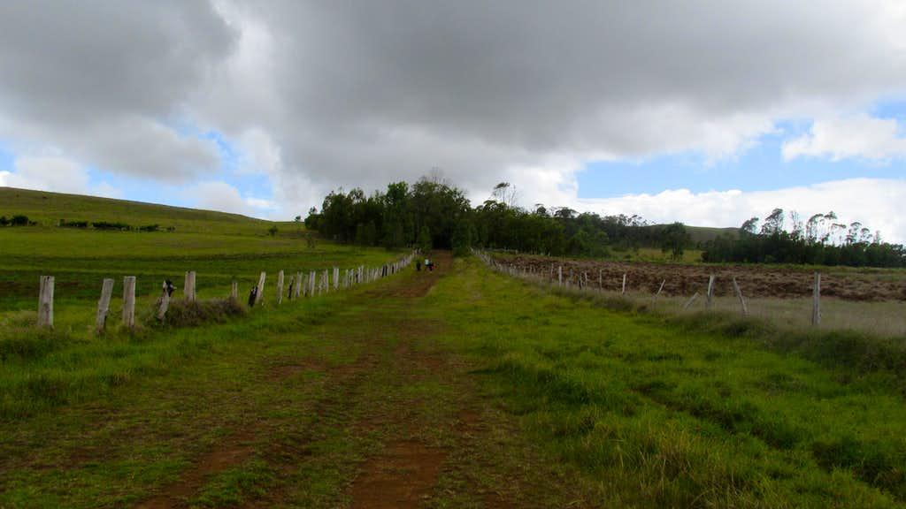 Terevaka Trail