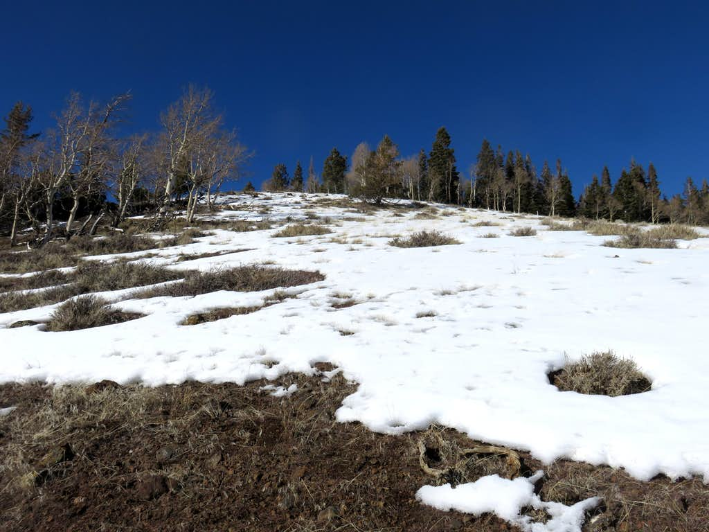 Heading up the slope to the summit