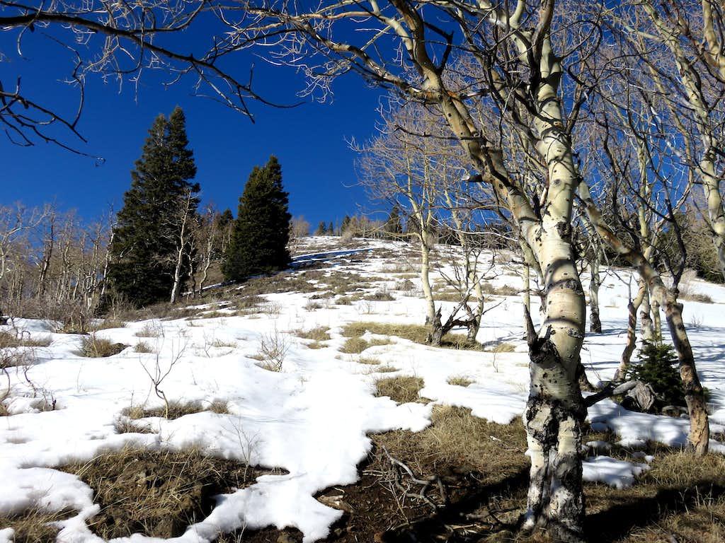 Hiking up final slope