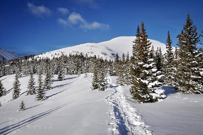 Quandary Peak climb