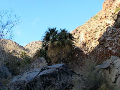 Hellhole Canyon to Maidenhair Falls