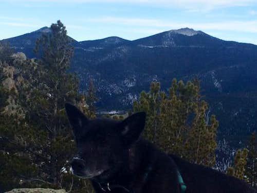 Gabby on Alps Mountain