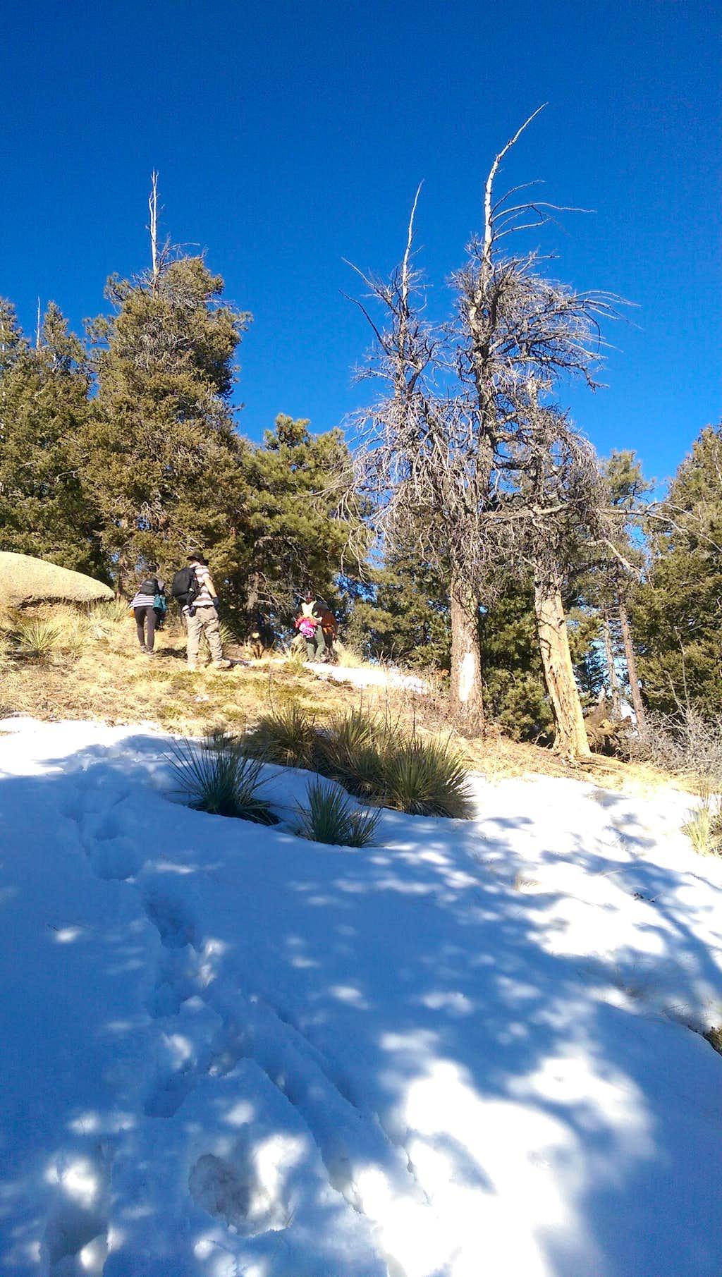 Mount Buckhorn in Winter