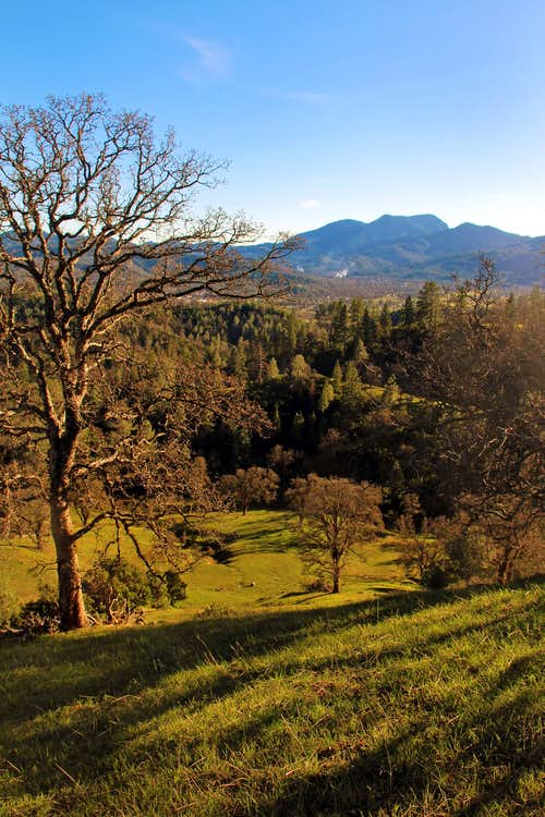 Collayomi Valley and Mt. St Helena