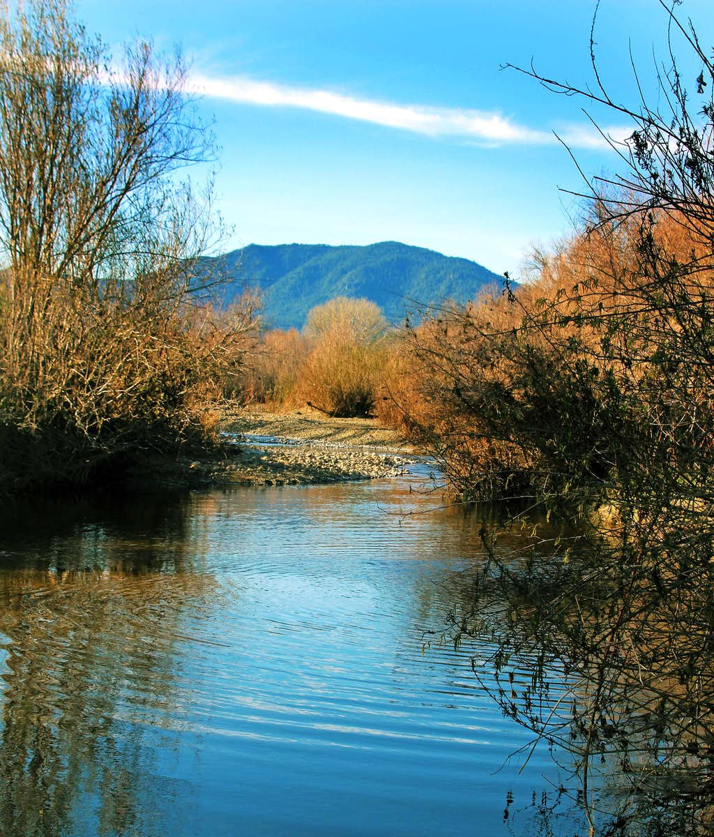 Cobb Mtn. from Putah Creek