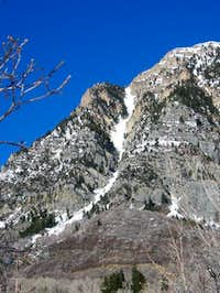 Jan 2005 - White Cascade