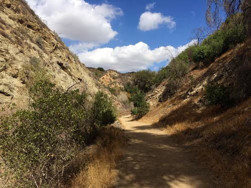 Beginning of the Canyon Trail