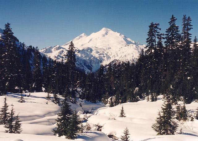 Mt. Baker from the ENE (from...
