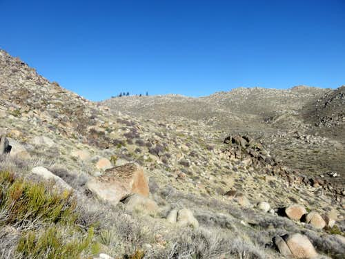 Looking up at the rocky hills