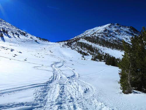 Unofficial Ski Park