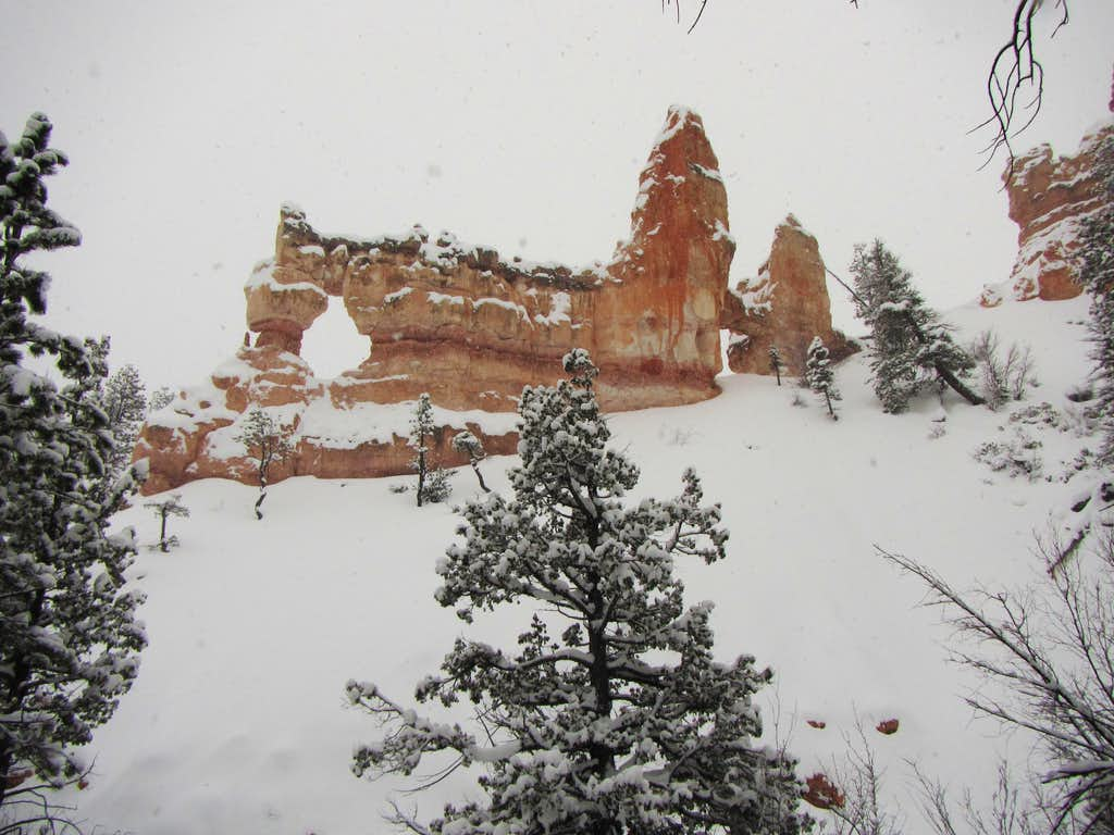 Bryce Canyon in winter -6
