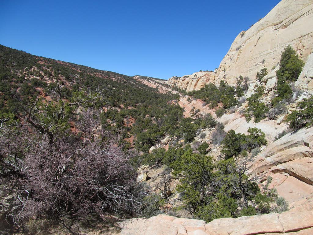 upper Upper Muley Twist Canyon