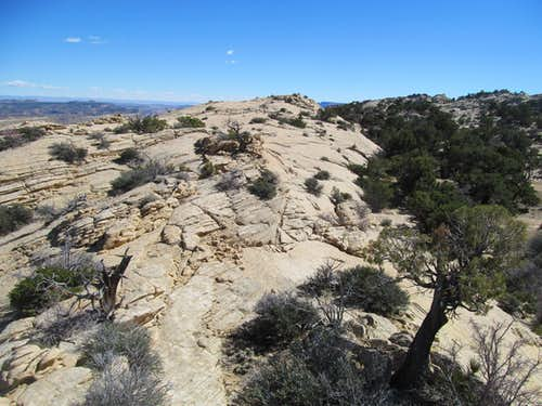 high slickrock trail
