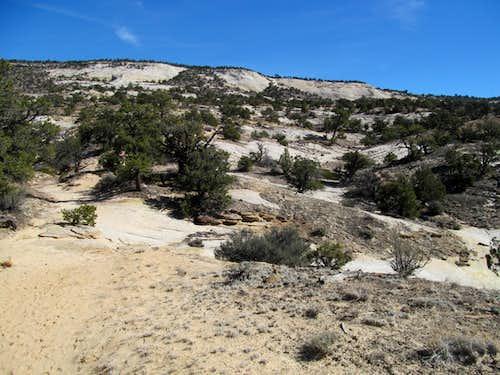 Upper Calf Creek Falls trail