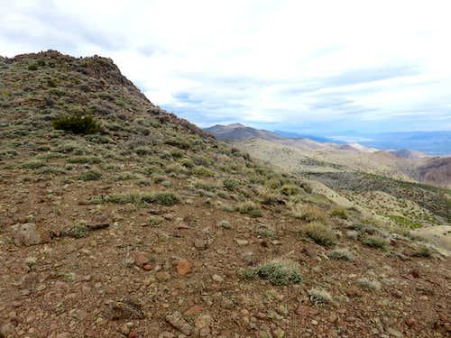 View to Virginia Peak from just below the summit of North Pond Peak
