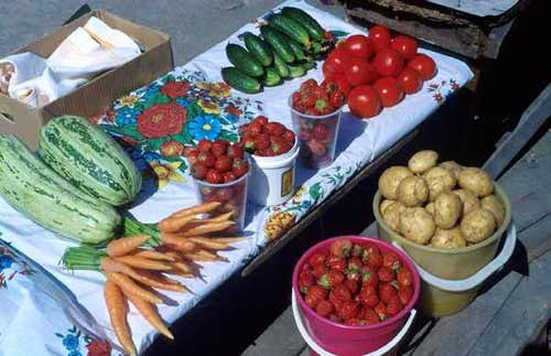 Great selection of fresh food...