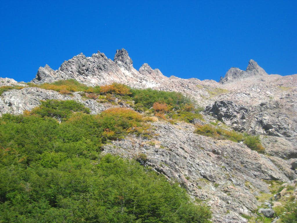 Looking up towards Pico Turista