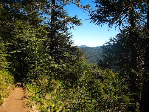 Trail to San Sebastian