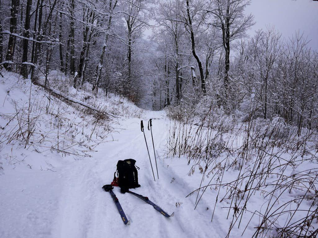 Bearpen XC Ski