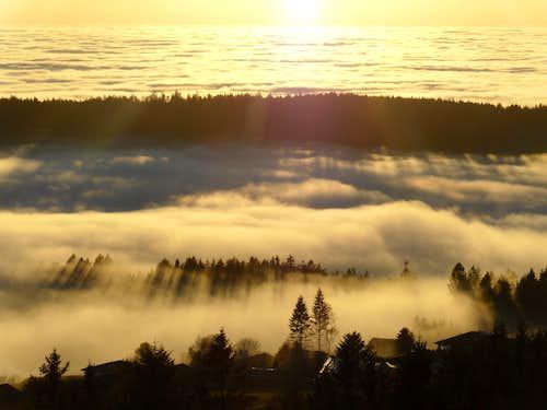 Fog, sun rays and shadows