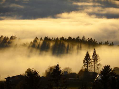Fog, light and shadow