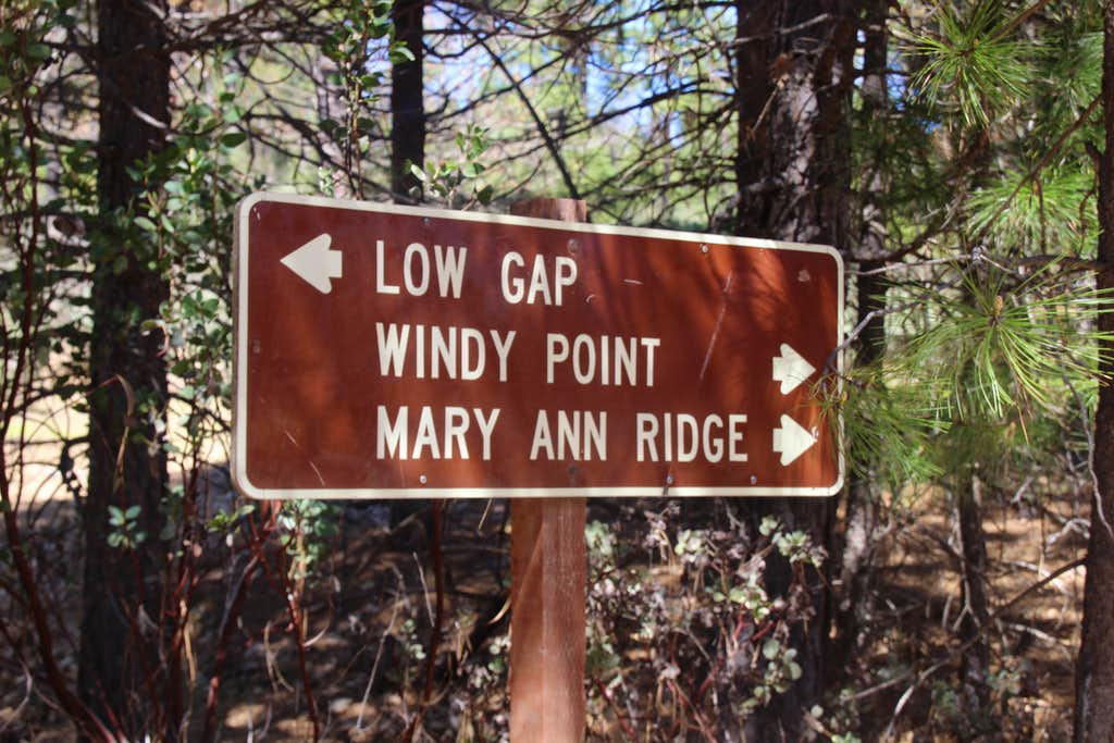 Nat. Forest sign to Windy Point